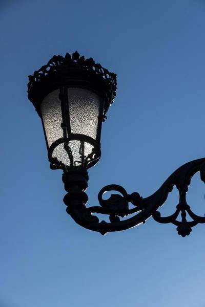 Photograph - Crowned Lantern - Left by Georgia Mizuleva