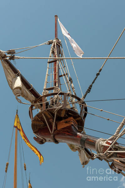 Photograph - Crows Nest by Dale Powell