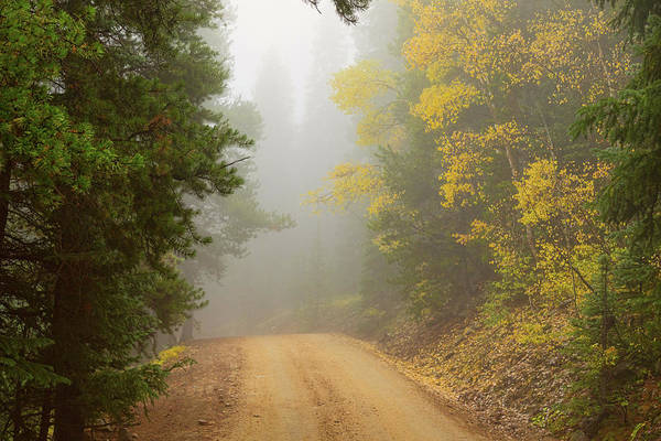 Photograph - Cruising Into Autumn Fog by James BO Insogna