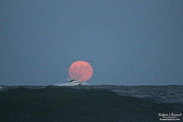 Photograph - Cruising On A Wave During Harvest Moon by Robert Banach