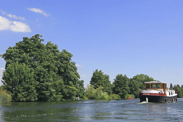 Photograph - Cruising The Thames by Tony Murtagh