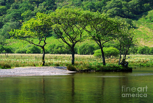 Wall Art - Photograph - Crummock Water by Louise Heusinkveld