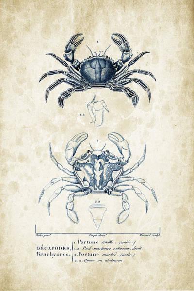 Wall Art - Digital Art - Crustaceans - 1825 - 03 by Aged Pixel