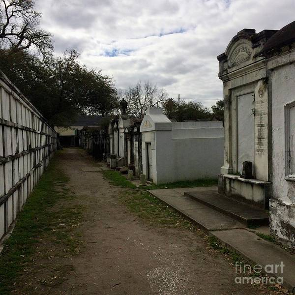 Photograph - Crypts by Kim Nelson