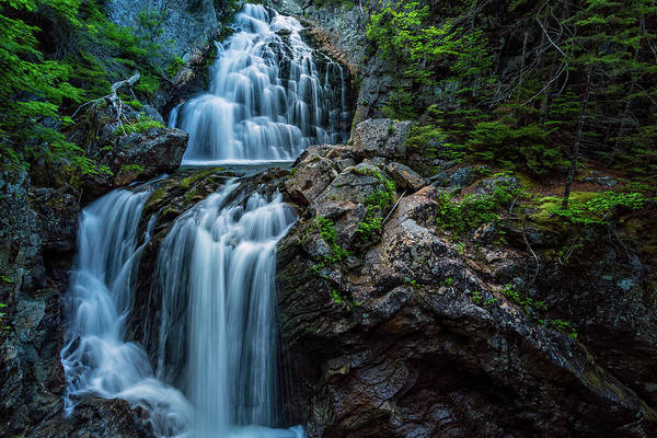 Photograph - Crystal Cascade Pinkham Notch New Hampshire by Jeff Sinon