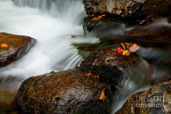 Photograph - Crystal Cascade by Susan Cole Kelly