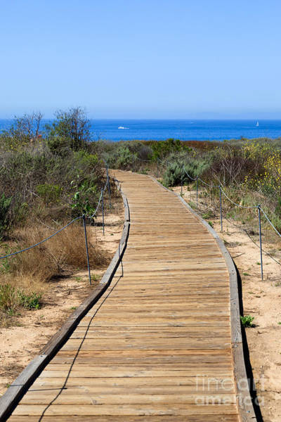 Crystal Coast Photograph - Crystal Cove State Park Wooden Walkway by Paul Velgos