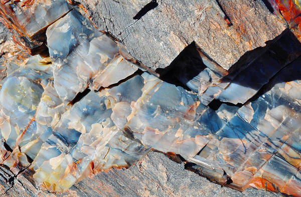 Photograph - Crystal Forest Petrified Wood Macro by Kyle Hanson