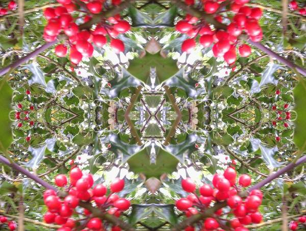 Photograph - Crystal Fractal 803 by Julia Woodman
