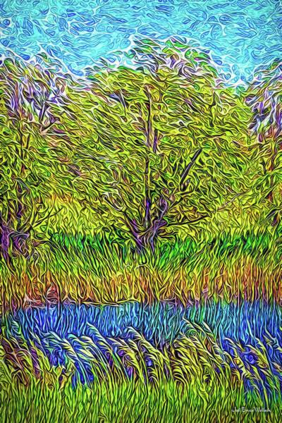 Digital Art - Crystal Pond Radiance by Joel Bruce Wallach