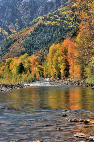 Photograph - Crystal River Fall Color by Harold Rau