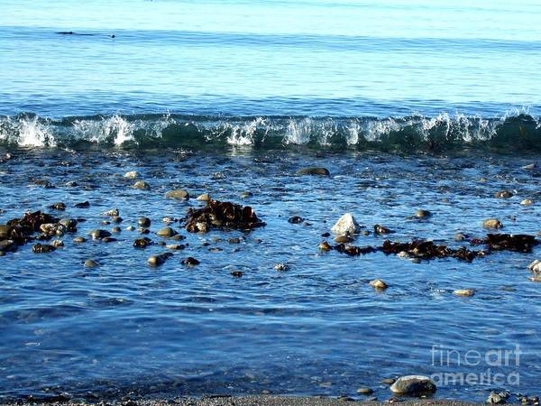 Photograph - Crystal Waves Rocks And Seaweed Along The Shoreline by Delores Malcomson