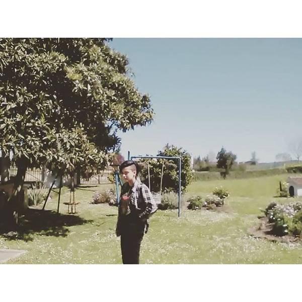 Tanto Photograph - Cuando Calidad Del Orto.😹 by Mientras Tanto Sonrrie