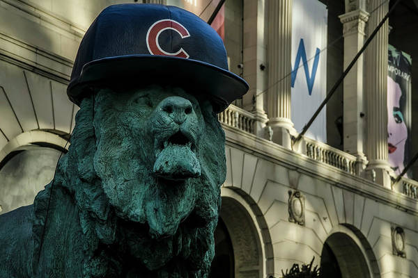 Photograph - Cub Hat On Art Institute Lion Telephoto by Sven Brogren
