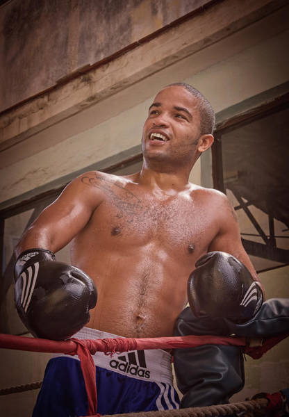 Photograph - Cuban Boxer Ready For Sparring by Joan Carroll