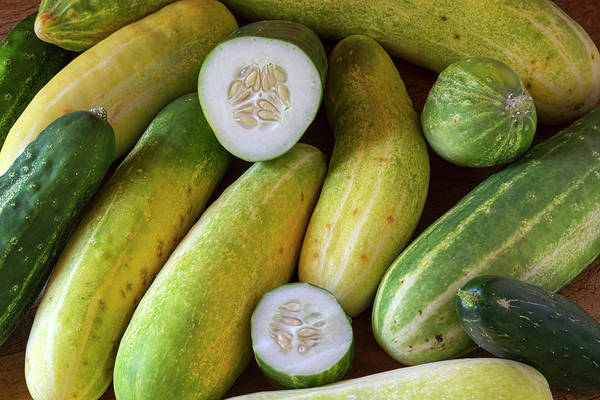 Photograph - Cucumbers by James BO Insogna