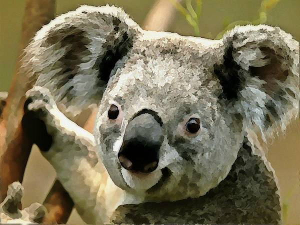 Wall Art - Digital Art - Cuddly Koala by Raven Hannah