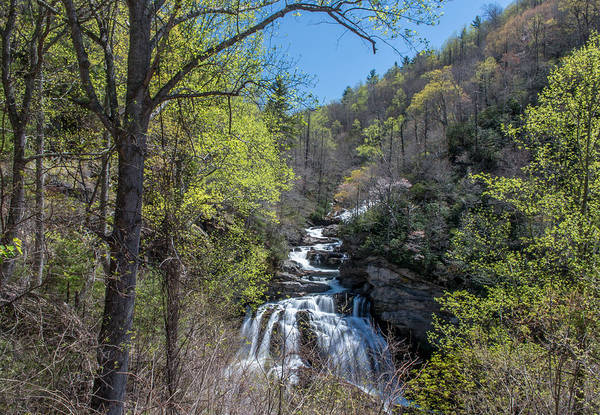 Photograph - Cullasaja In The Spring Time by Chris Berrier