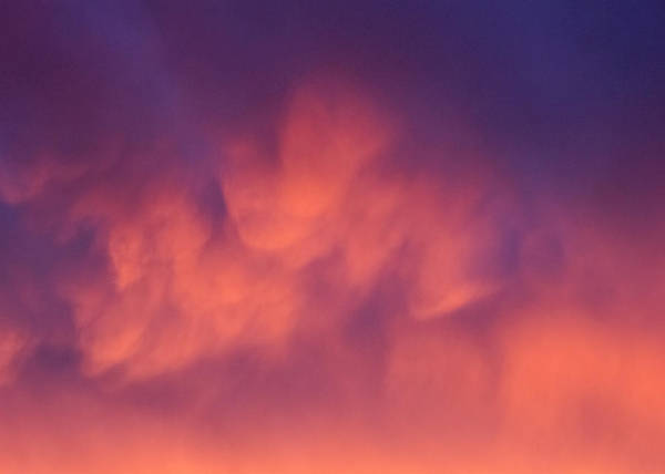 Photograph - Cumulous Afterglow by Nicholas Blackwell