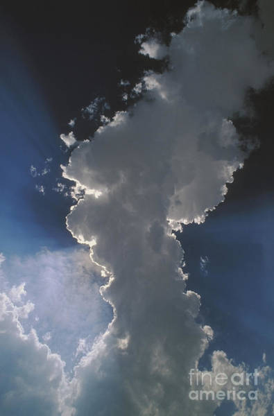 Photograph - Cumulus Clouds And Crepuscular Rays by Jim Reed