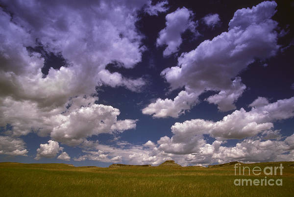 Photograph - Cumulus Mediocris Clouds by Jim Reed