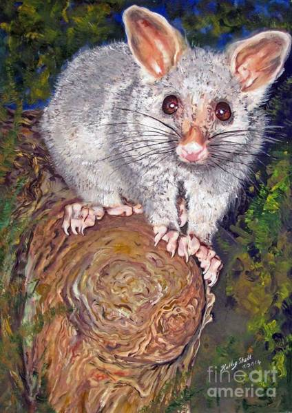 Painting - Curious Possum  by Ryn Shell