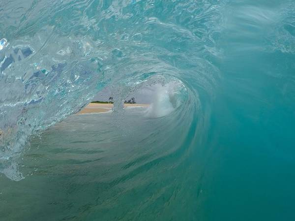 Bodyboard Photograph - Curl Visions  by Benen  Weir