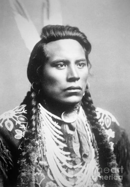 Wall Art - Photograph - Curley, Of The Crow Tribe, One Of Custer's Scouts by American School
