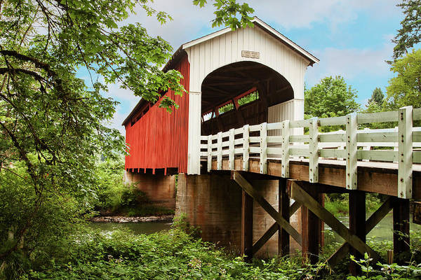 Photograph - Currin Bridge by Mary Jo Allen