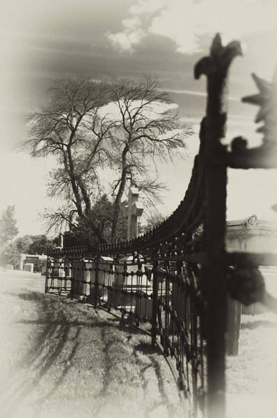 Charnel Photograph - Curved Gate by Scott Wyatt
