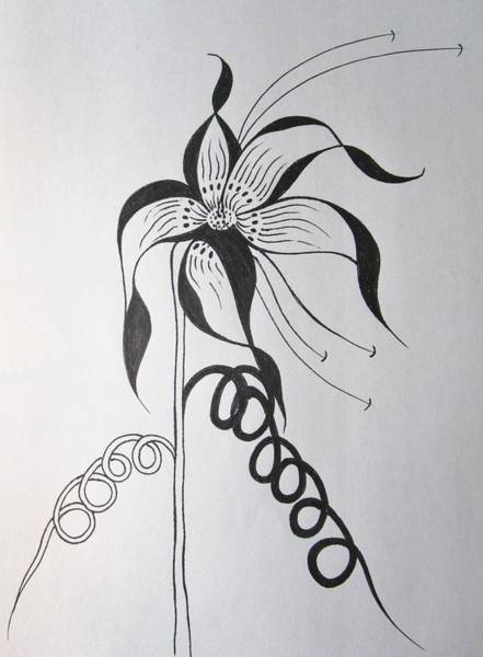 Drawing - Curved by Rosita Larsson