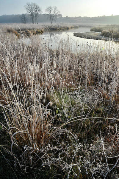 Photograph - Curving Nippersink Creek In Glacial Park On Frosty Morning by Ray Mathis