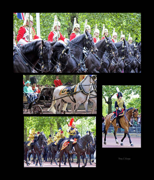 Queens Birthday Photograph - Custom 1056 by Betsy Knapp
