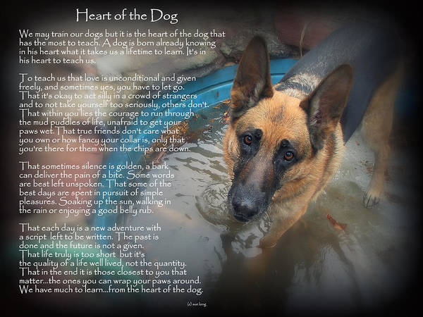 Wall Art - Photograph - Custom Paw Print Maxx Heart Of The Dog by Sue Long