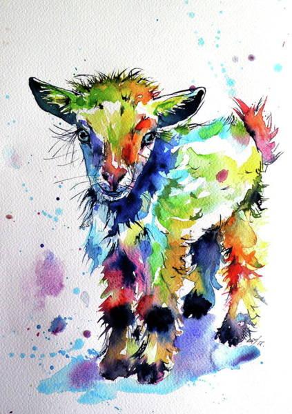 Wall Art - Painting - Cute Baby Goat by Kovacs Anna Brigitta