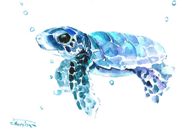 Wall Art - Painting - Cute Baby Turtle by Suren Nersisyan