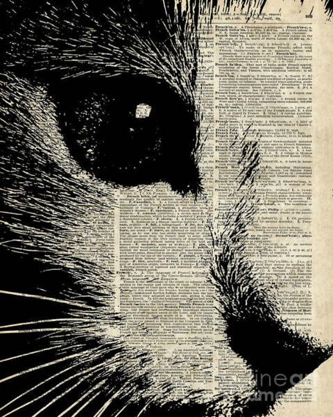 Wall Art - Digital Art - Cute Cat Illustration Over Old Dictionary Page by Anna W