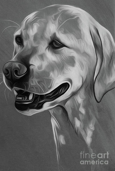 Riviere Painting - Cute Dog 03 by Gull G