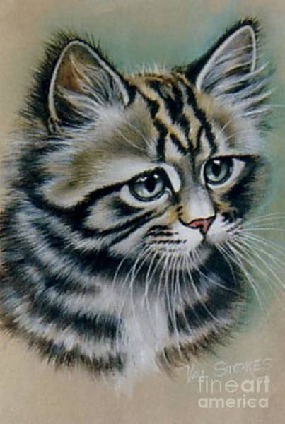 Painting - Cute Kitten by Val Stokes