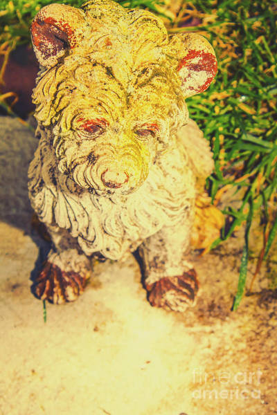 Realistic Photograph - Cute Weathered White Garden Ornament Of A Dog by Jorgo Photography - Wall Art Gallery