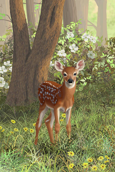 Fawn Painting - Cute Whitetail Fawn by Crista Forest