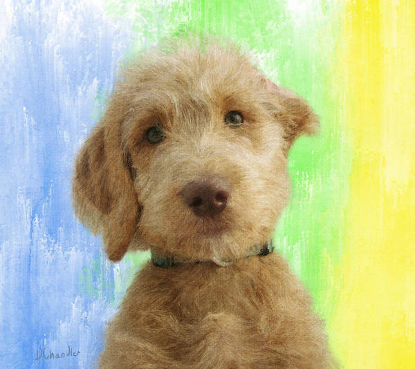 Painting - Cuter Than Cute by Diane Chandler