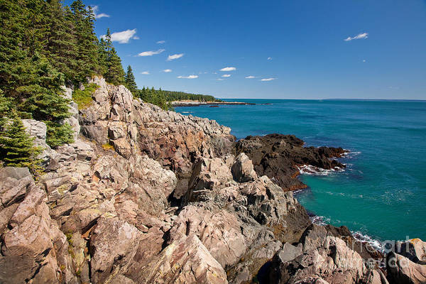 Wall Art - Photograph - Cutler Cliffs 1 by Susan Cole Kelly
