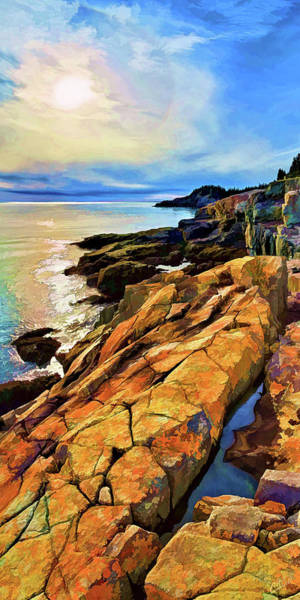 Photograph - Cutler Coast Lichen by ABeautifulSky Photography by Bill Caldwell