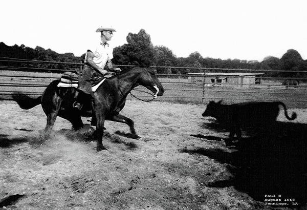 Photograph - Cutting  Horse  1968 by Carl Deaville