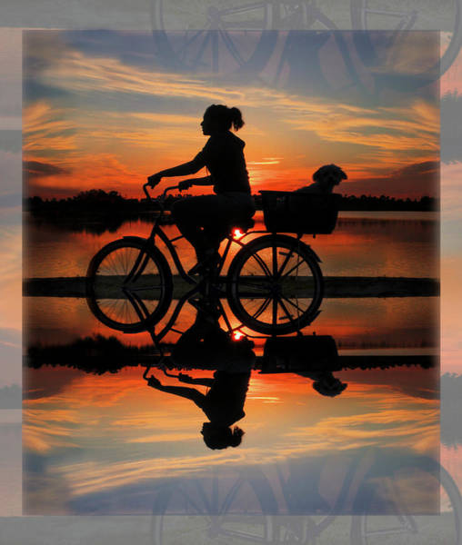 Okeeheelee Park Photograph - Cycling At Sunset by Debra and Dave Vanderlaan