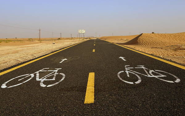 Photograph - Cycling Path In The Desert by Alexandre Rotenberg
