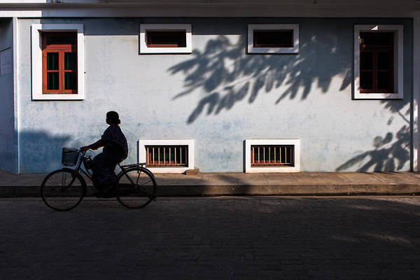 Photograph - Cycling Silhouette by Marji Lang