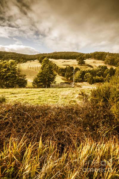 Cygnet Wall Art - Photograph - Cygnet Rustic Farming Fields by Jorgo Photography - Wall Art Gallery