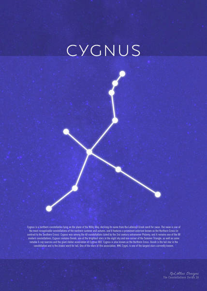 Wall Art - Mixed Media - Cygnus The Constellations Series 26 by Design Turnpike